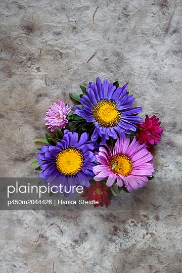 Bunte Blüten     - p450m2044426 von Hanka Steidle