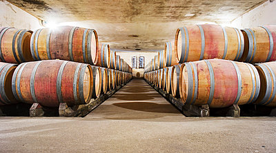 Barrels stored in a row for aging in the wine cellar - p1025m788921f by Peter Karlsson