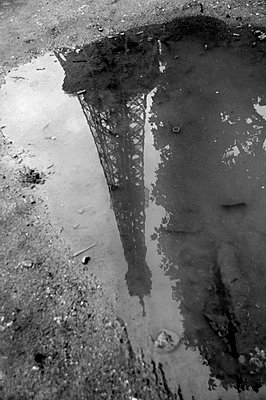 Reflection of Eiffel Tower in Puddle - p1072m836373 by Neville Mountford-Hoare