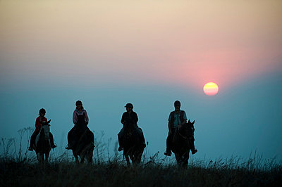 A horse riding safari is a popular way to explore Zomba Plateau - p6521870 by John Warburton-Lee