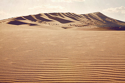 Desert - p1150m1123681 by Elise Ortiou Campion