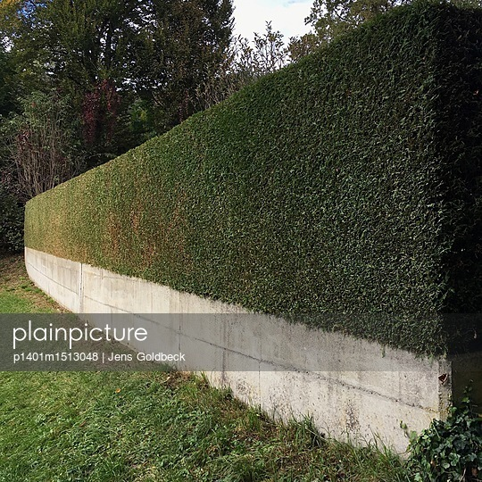 Hedge as screen - p1401m1513048 by Jens Goldbeck