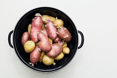 Potatoes - p1149m1123252 by Yvonne Röder