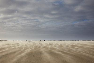 Strand - p1294m1559437 von Sabine Bungert