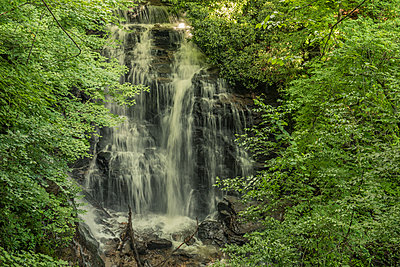 Waterfall in the interior of a forest in Great Smoky Mountains - p1166m2129418 by Cavan Images