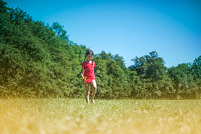 Luna running in the fields 2 - p1007m854295 by Tilby Vattard