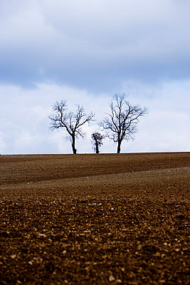 Agriculture - p2480827 by BY