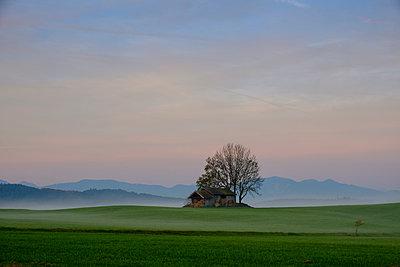 Germany, Pfaffenwinkel, landscape at morning - p300m2059372 by Lisa und Wilfried Bahnmüller
