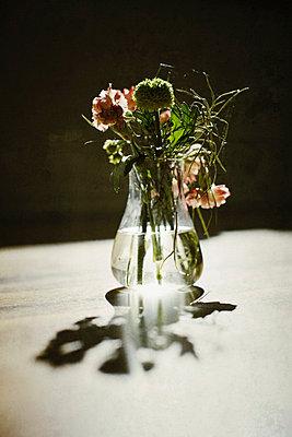 Blumen in Vase - p586m727493 von Kniel Synnatzschke