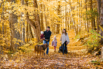 Family of four and dog in forest - p924m2058239 by Viara Mileva