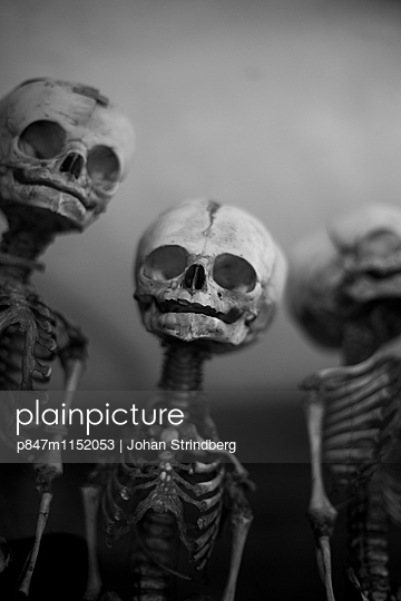 p847m1152053 von Johan Strindberg
