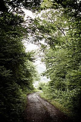 Wanderweg - p586m786221 von Kniel Synnatzschke