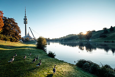 Germany, Munich, Olympic Park and Olympic Lake against morning sun - p300m2104501 by Wilfried Feder
