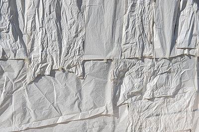 Verknittert - p949m951710 von Frauke Schumann