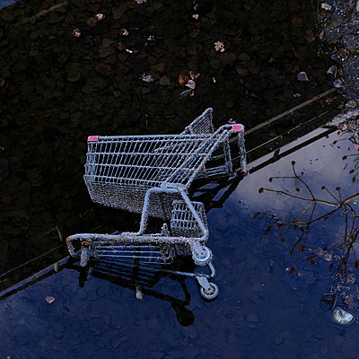 Shopping cart in the puddle - p1105m2086526 by Virginie Plauchut