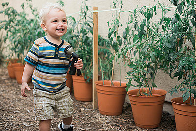 Little boy growing tomato plants in pots. - p1166m2171509 by Cavan Images