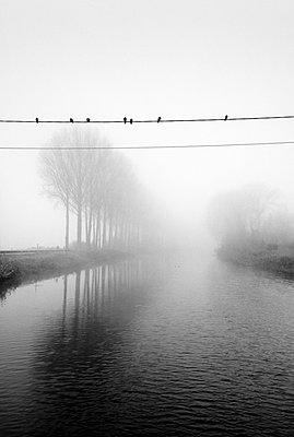Leopold Canal, Belgium - p1245m1043397 by Catherine Minala