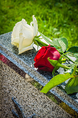 Roses on a headstone - p1418m1571986 by Jan Håkan Dahlström