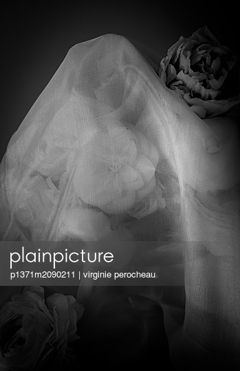 p1371m2090211 by virginie perocheau