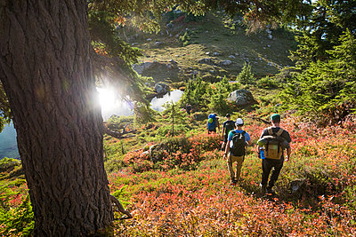 Group of backpackers hike through lush alpine meadow during autumn. - p1166m2095300 by Cavan Images