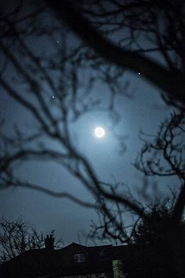 Glimmernder Mond - p686m931224 von Paul Tait