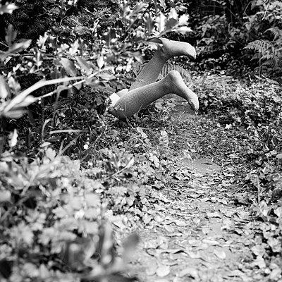 Beine im Gebüsch - p1550m2134574 von Kumi Oguro