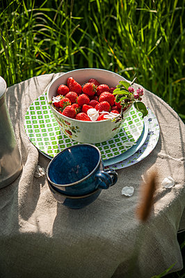 Picnic with fresh strawberries - p1288m1161436 by Nicole Franke