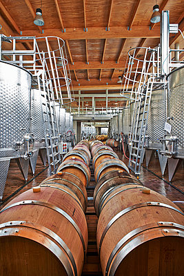 Winery, modern wine cellar and bottling plant - p390m1556474 by Frank Herfort