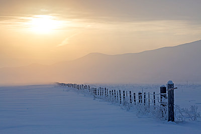 Sunrise over fence in snowy rural landscape - p555m1311938 by Steve Smith