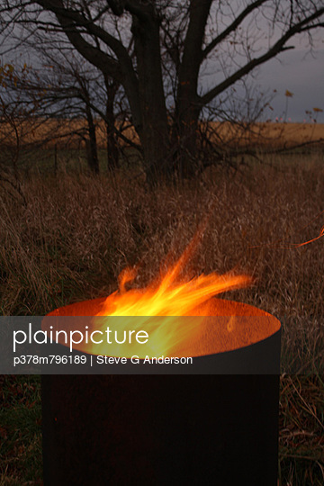 Fire barrel with tree - p378m796189 by Steve G Anderson