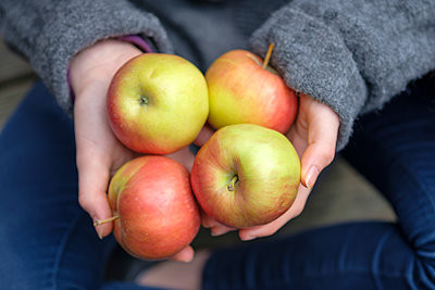 Hands holding four apples, close-up - p300m1580930 von Lisa und Wilfried Bahnmüller
