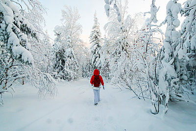 Caucasian woman hiking in snowy forest - p555m1231754 by Aleksander Rubtsov