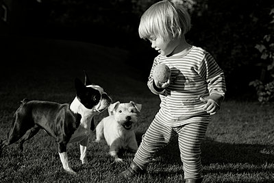 Toddler in the garden playing with dogs - p972m1088610 by Felix Odell