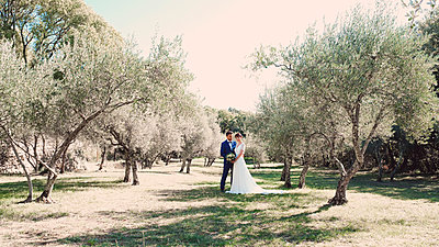 Bride and groom in an olive grove - p1521m2126365 by Charlotte Zobel