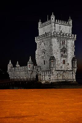 Old castle - p1695m2290952 by Dusica Paripovic