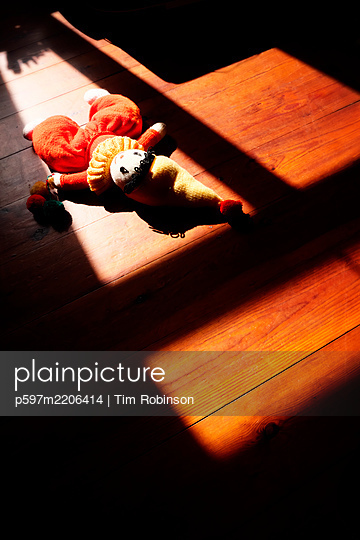 Rag doll laying on wooden floor - p597m2206414 by Tim Robinson
