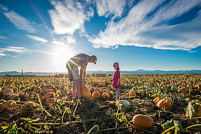 Side view of daughter looking at father picking pumpkin while standing on field against sky during sunny day - p1166m2024967 by Cavan Images