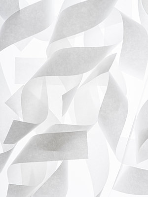 Paper strips - p401m1462340 by Frank Baquet