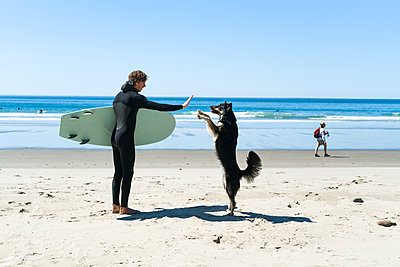 Man giving high-five to dog at beach against clear sky - p1166m1210566 by Cavan Images