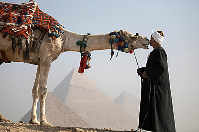 A Bedouin guide with his camel, overlooking the Pyramids of Giza, UNESCO World Heritage Site, Cairo, Egypt, North Africa, Africa - p8712737 by Andrew McConnell