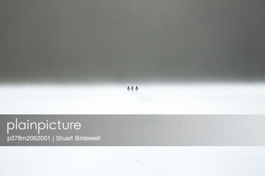 p378m2062001 von Stuart Bridewell