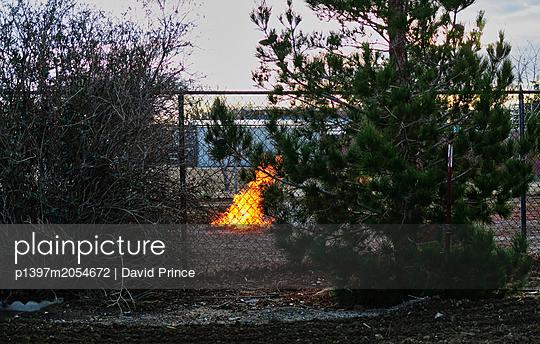 Feuer - p1397m2054672 von David Prince