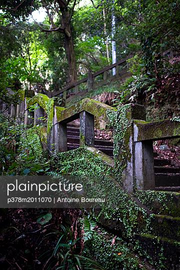 p378m2011070 von Antoine Boureau
