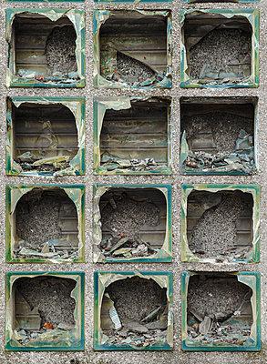 Broken glass brick window - p1280m2028315 by Dave Wall