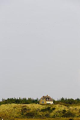 Gelbes Reethaus in den Dünen - p248m952354 von BY