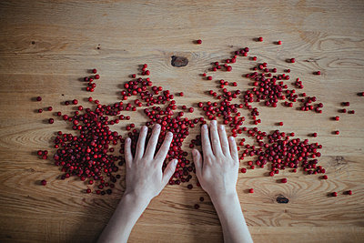 Cranberries on a wooden table  - p1414m2044898 by Dasha Pears