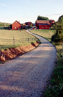 A gravel road leading to a farm - p3483572 by Arno Daalder