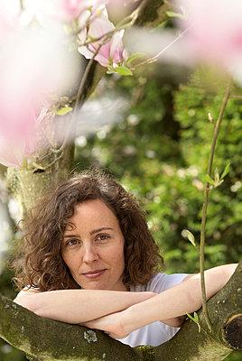 Magnolia - p3790352 by Scheller