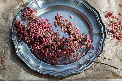 Pink peppercorns on tin plate - p300m2060270 by JLPfeifer