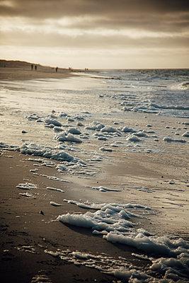 Deutschland, Nordsee, Strandimpressionen, Sylt - p300m2166231 von Annie Hall
